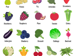 August:Fruits and Vegetables